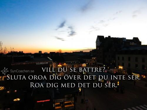 131126_1708_img_2938-vill-du-se-battre-sluta-oroa-dig-syncoachen-1600