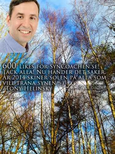 img_0265-syncoachen-facebook-600-likes-1600