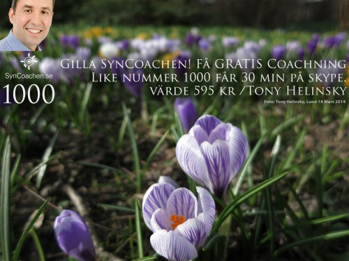 140314_1446_img_3699_SynCoachen_Facebook_Syntraning_like_nr1000_gratis_coachning_1600